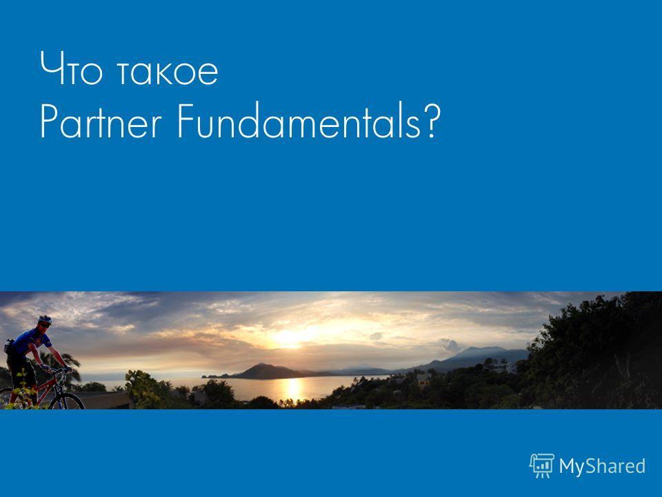 Что такое Partner Fundamentals?