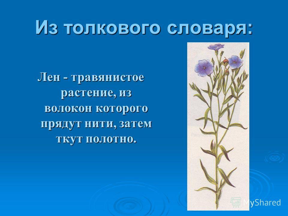 Из толкового словаря: Лен - травянистое растение, из волокон которого прядут нити, затем ткут полотно.
