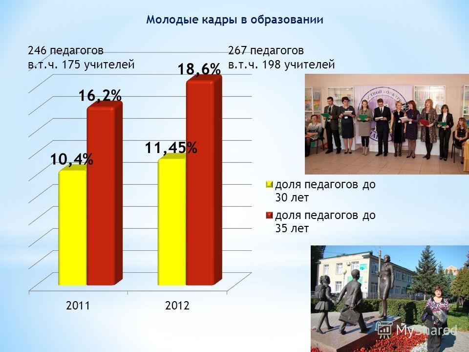 Молодые кадры в образовании 246 педагогов в.т.ч. 175 учителей 267 педагогов в.т.ч. 198 учителей
