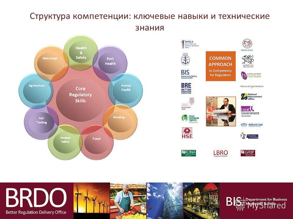 BRDO Структура компетенции: ключевые навыки и технические знания