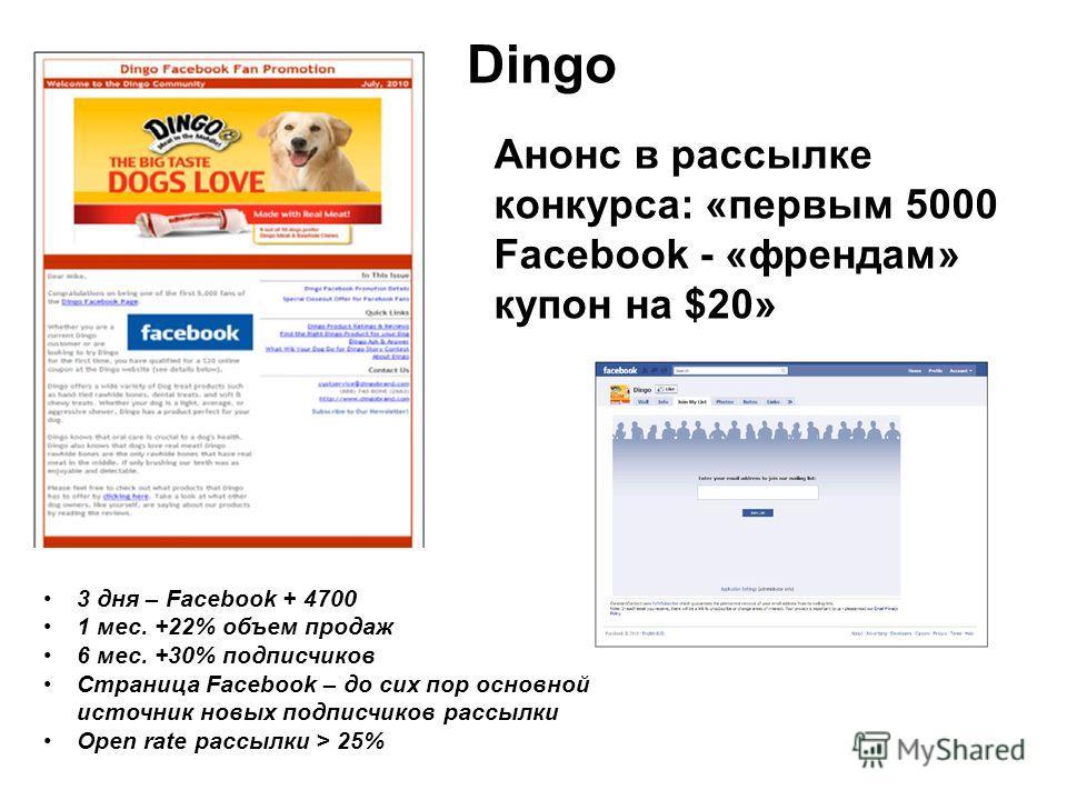 Dingo Анонс в рассылке конкурса: «первым 5000 Facebook - «френдам» купон на $20» 3 дня – Facebook + 4700 1 мес. +22% объем продаж 6 мес. +30% подписчиков Страница Facebook – до сих пор основной источник новых подписчиков рассылки Open rate рассылки >