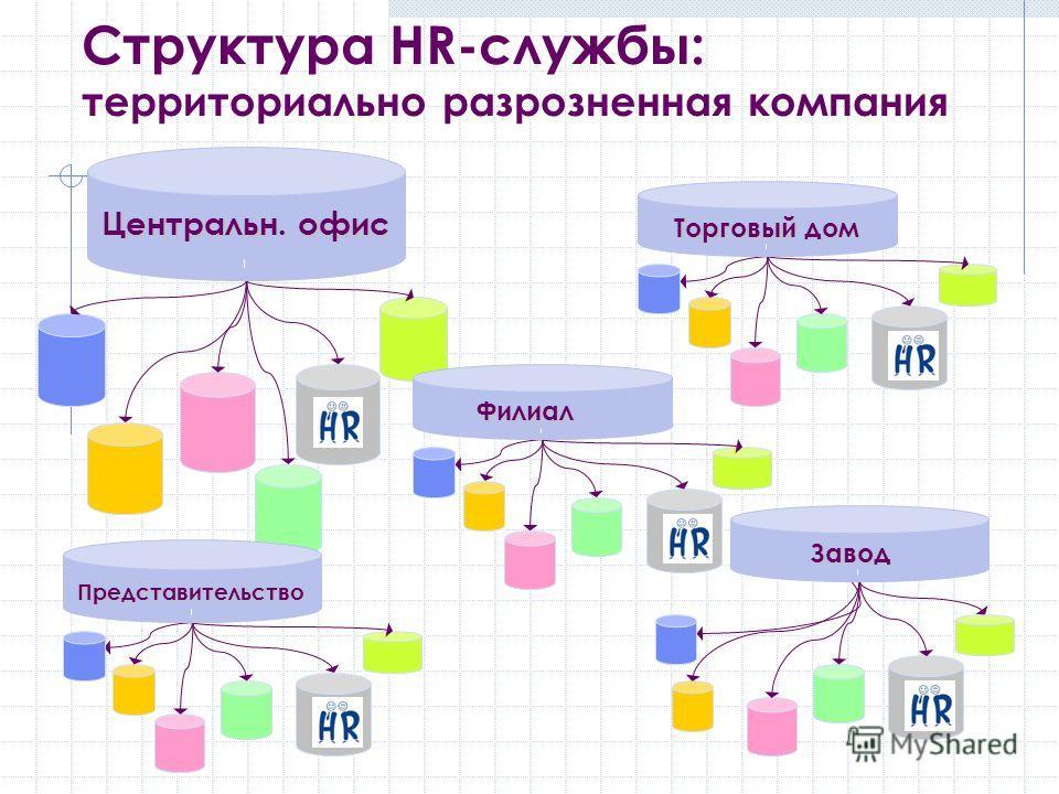 Структура HR-службы: территориально разрозненная компания Центральн. офис Торговый дом Завод Представительство Филиал