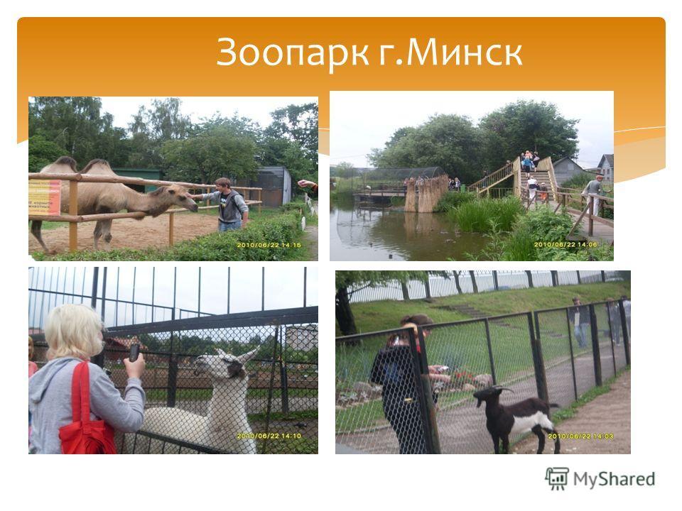 Зоопарк г.Минск
