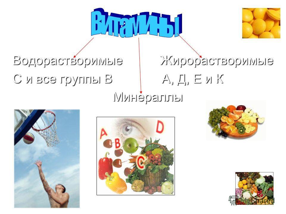 Водорастворимые Жирорастворимые С и все группы В А, Д, Е и К Минераллы