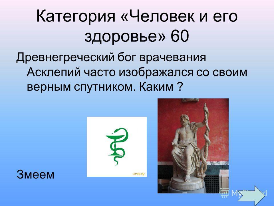 Категория «Человек и его здоровье» 60 Древнегреческий бог врачевания Асклепий часто изображался со своим верным спутником. Каким ? Змеем