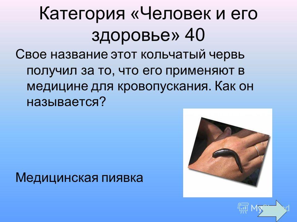 Категория «Человек и его здоровье» 40 Свое название этот кольчатый червь получил за то, что его применяют в медицине для кровопускания. Как он называется? Медицинская пиявка