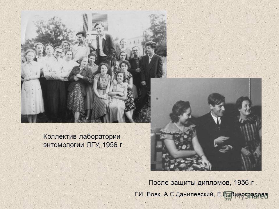 Коллектив лаборатории энтомологии ЛГУ, 1956 г После защиты дипломов, 1956 г Г.И. Вовк, А.С.Данилевский, Е.Б. Виноградова