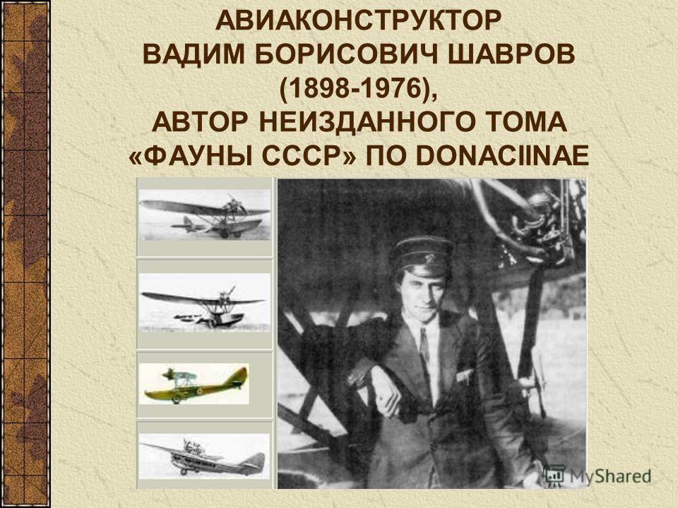 АВИАКОНСТРУКТОР ВАДИМ БОРИСОВИЧ ШАВРОВ (1898-1976), АВТОР НЕИЗДАННОГО ТОМА «ФАУНЫ СССР» ПО DONACIINAE