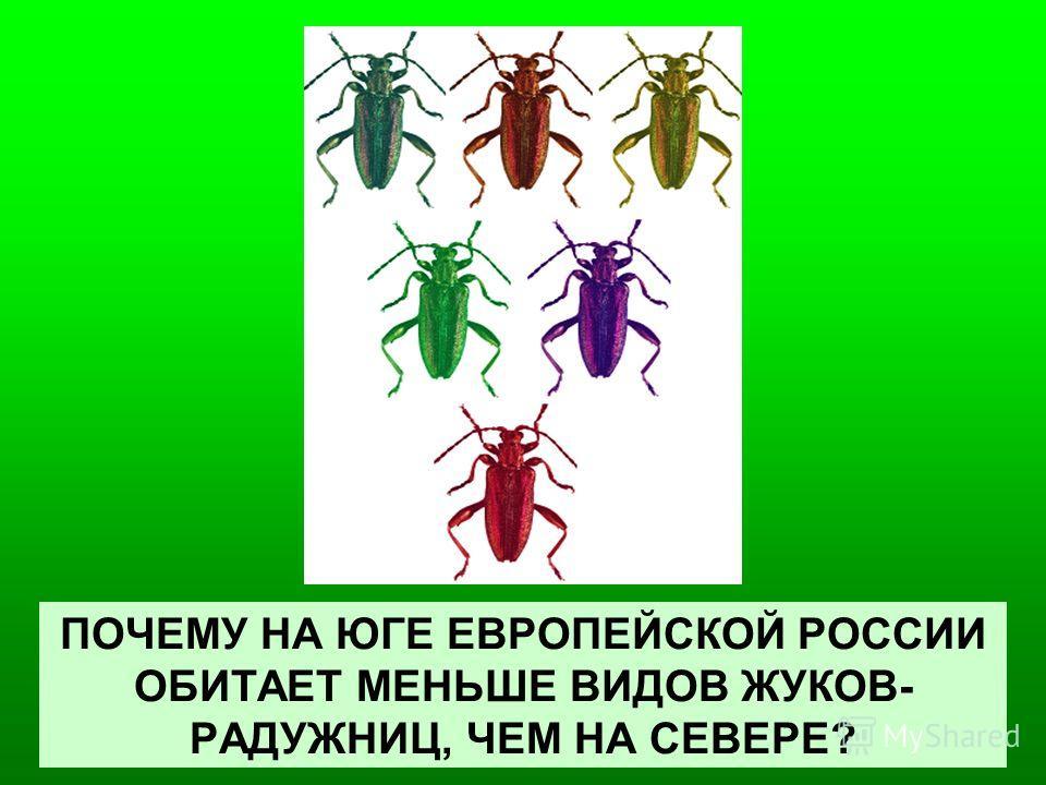 ПОЧЕМУ НА ЮГЕ ЕВРОПЕЙСКОЙ РОССИИ ОБИТАЕТ МЕНЬШЕ ВИДОВ ЖУКОВ- РАДУЖНИЦ, ЧЕМ НА СЕВЕРЕ?
