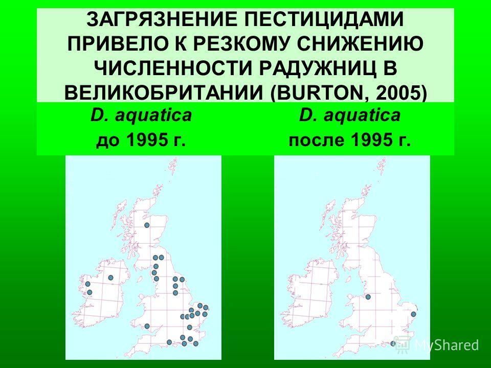 ЗАГРЯЗНЕНИЕ ПЕСТИЦИДАМИ ПРИВЕЛО К РЕЗКОМУ СНИЖЕНИЮ ЧИСЛЕННОСТИ РАДУЖНИЦ В ВЕЛИКОБРИТАНИИ (BURTON, 2005) D. aquatica до 1995 г. D. aquatica после 1995 г.