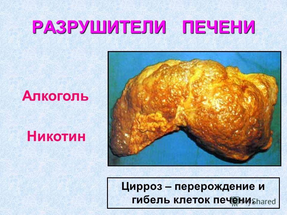 РАЗРУШИТЕЛИ ПЕЧЕНИ Цирроз – перерождение и гибель клеток печени. Алкоголь Никотин