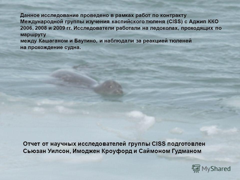 Данное исследование проведено в рамках работ по контракту Международной группы изучения каспийского тюленя (CISS) с Аджип ККО 2006, 2008 и 2009 гг. Исследователи работали на ледоколах, проходящих по маршруту между Кашаганом и Баутино, и наблюдали за