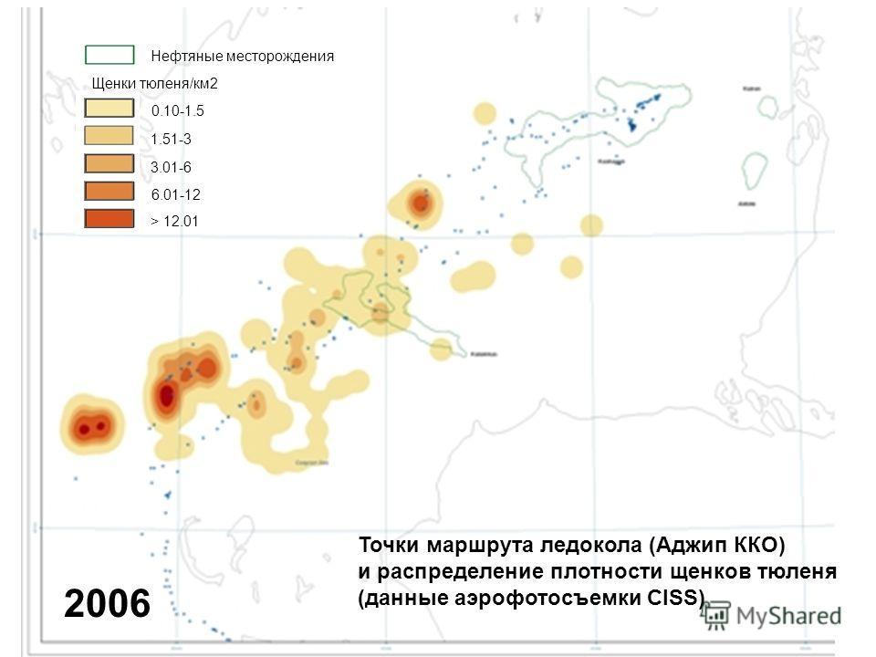 2006 Точки маршрута ледокола (Аджип ККО) и распределение плотности щенков тюленя (данные аэрофотосъемки CISS) Нефтяные месторождения Щенки тюленя/км2 0.10-1.5 1.51-3 3.01-6 6.01-12 > 12.01
