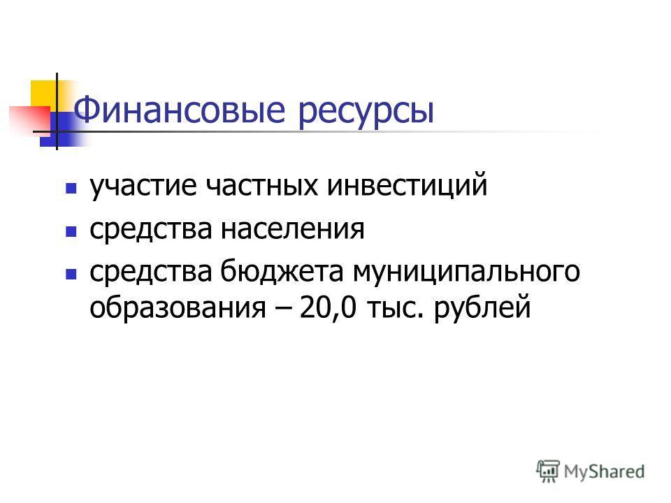 Финансовые ресурсы участие частных инвестиций средства населения средства бюджета муниципального образования – 20,0 тыс. рублей