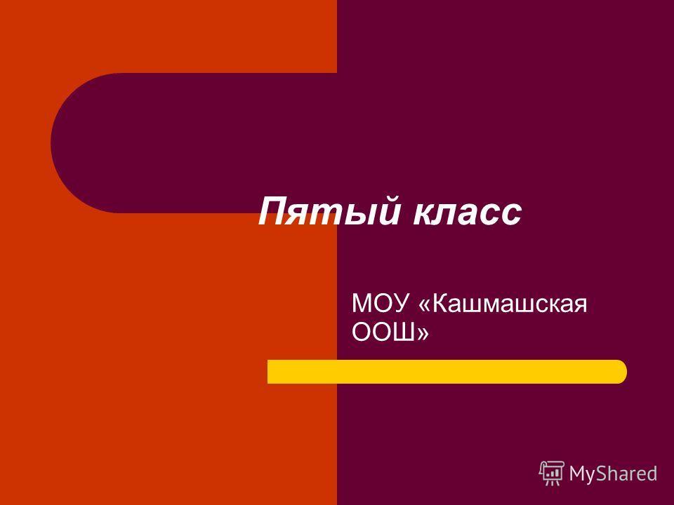 Пятый класс МОУ «Кашмашская ООШ»