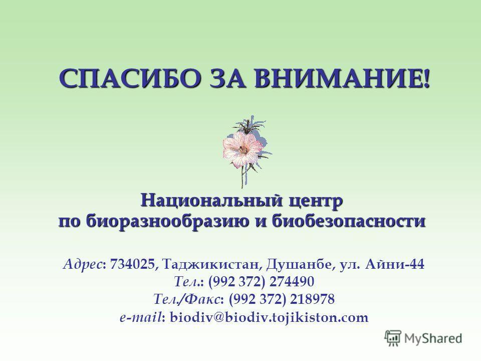 СПАСИБО ЗА ВНИМАНИЕ! Национальный центр по биоразнообразию и биобезопасности Адрес : 734025, Таджикистан, Душанбе, ул. Айни-44 Тел.: (992 372) 274490 Тел./Факс : (992 372) 218978 e-mail : biodiv@biodiv.tojikiston.com