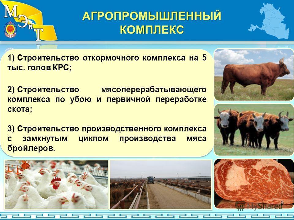 1) Строительство откормочного комплекса на 5 тыс. голов КРС; 2) Строительство мясоперерабатывающего комплекса по убою и первичной переработке скота; 3) Строительство производственного комплекса с замкнутым циклом производства мяса бройлеров. 1) Строи