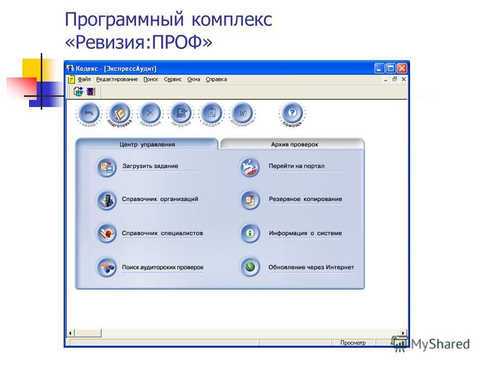 Программный комплекс «Ревизия:ПРОФ»