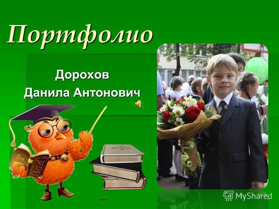 Портфолио Дорохов Данила Антонович