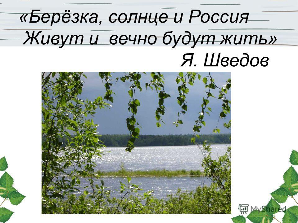 «Берёзка, солнце и Россия Живут и вечно будут жить» Я. Шведов