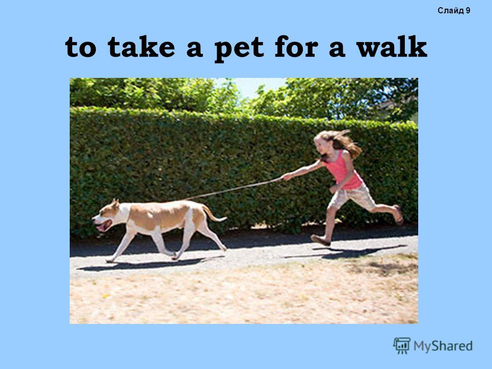 to take a pet for a walk Слайд 9