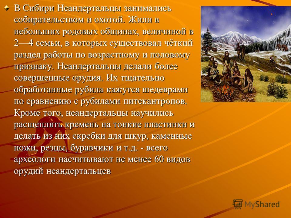 В Сибири Неандертальцы занимались собирательством и охотой. Жили в небольших родовых общинах, величиной в 24 семьи, в которых существовал чёткий раздел работы по возрастному и половому признаку. Неандертальцы делали более совершенные орудия. Их тщате