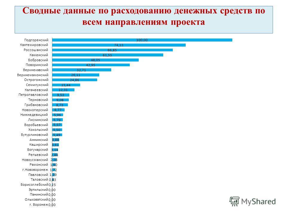 Сводные данные по расходованию денежных средств по всем направлениям проекта