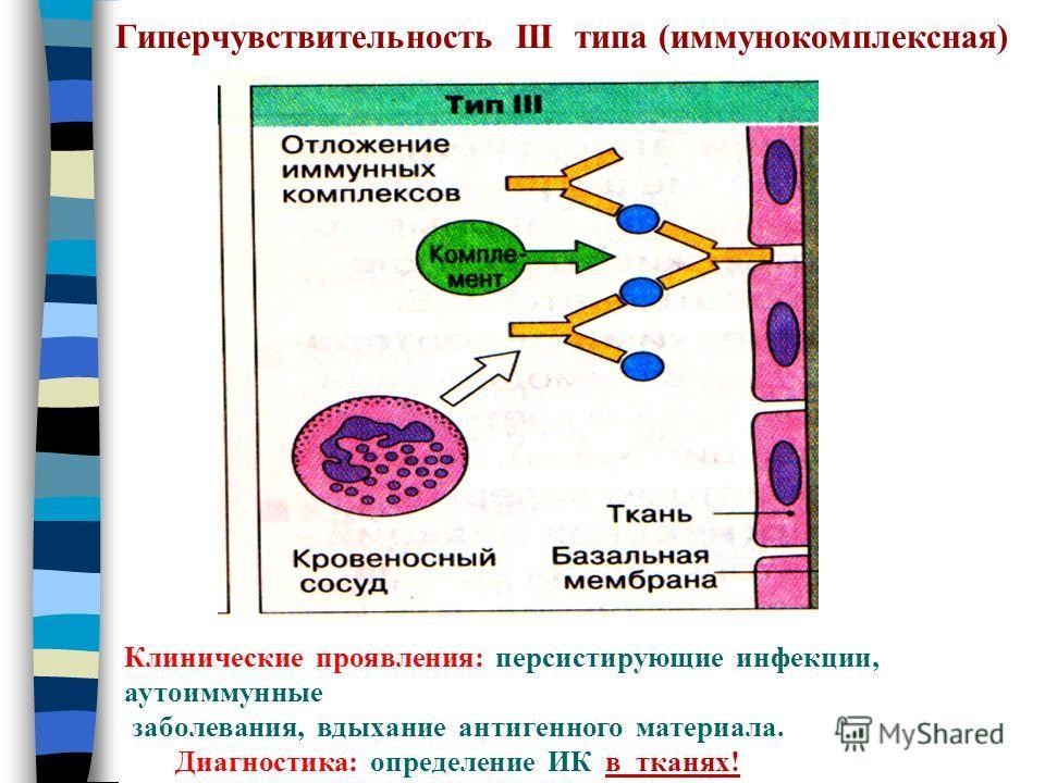 Гиперчувствительность III типа (иммунокомплексная) Клинические проявления: персистирующие инфекции, аутоиммунные заболевания, вдыхание антигенного материала. Диагностика: определение ИК в тканях!