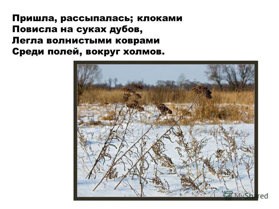 Пришла, рассыпалась; клоками Повисла на суках дубов, Легла волнистыми коврами Среди полей, вокруг холмов.