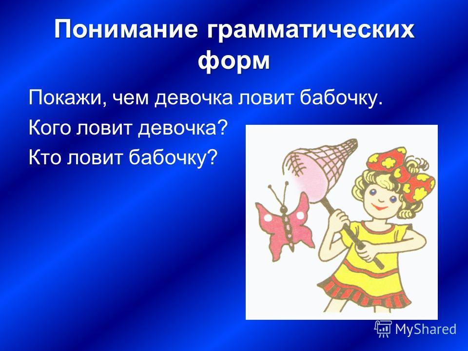 Понимание грамматических форм Покажи, чем девочка ловит бабочку. Кого ловит девочка? Кто ловит бабочку?