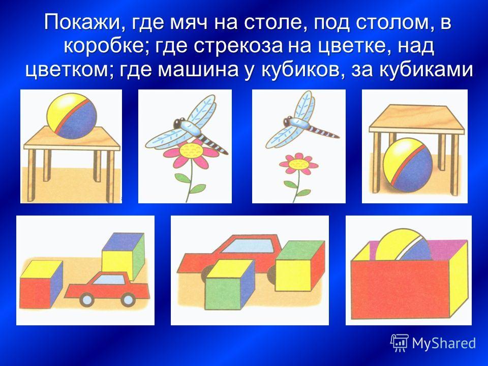 П окажи, где мяч на столе, под столом, в коробке; где стрекоза на цветке, над цветком; где машина у кубиков, за кубиками