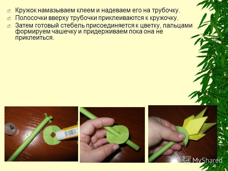 Кружок намазываем клеем и надеваем его на трубочку. Полосочки вверху трубочки приклеиваются к кружочку. Затем готовый стебель присоединяется к цветку, пальцами формируем чашечку и придерживаем пока она не приклеиться.