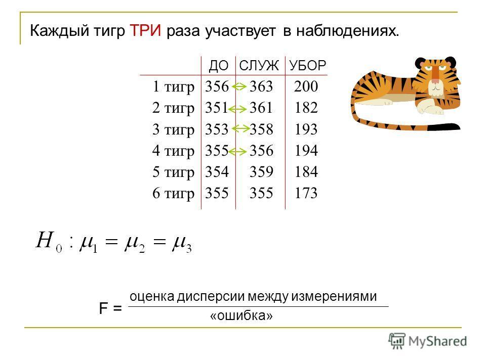 Каждый тигр ТРИ раза участвует в наблюдениях. ДО СЛУЖ УБОР 1 тигр 356363 200 2 тигр 351361 182 3 тигр 353358 193 4 тигр 355356 194 5 тигр 354359 184 6 тигр 355355 173 F = оценка дисперсии между измерениями «ошибка»