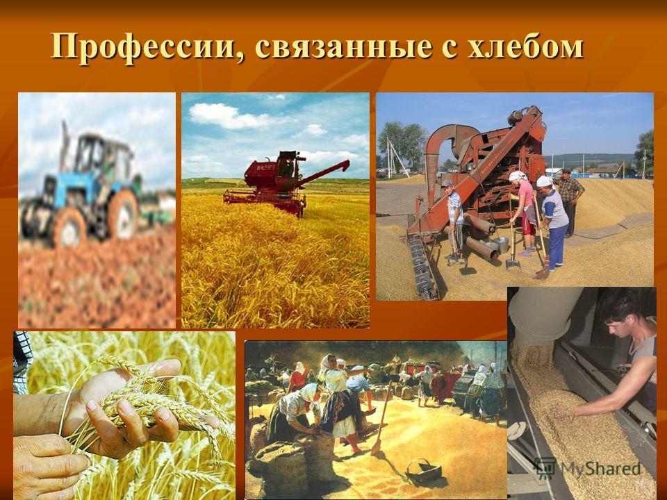 Профессии, связанные с хлебом