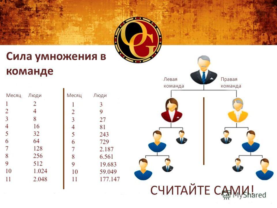 Сила умножения в команде Месяц Люди Левая команда Правая команда СЧИТАЙТЕ САМИ!