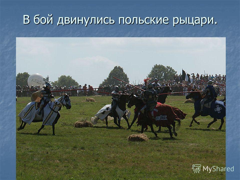 В бой двинулись польские рыцари.
