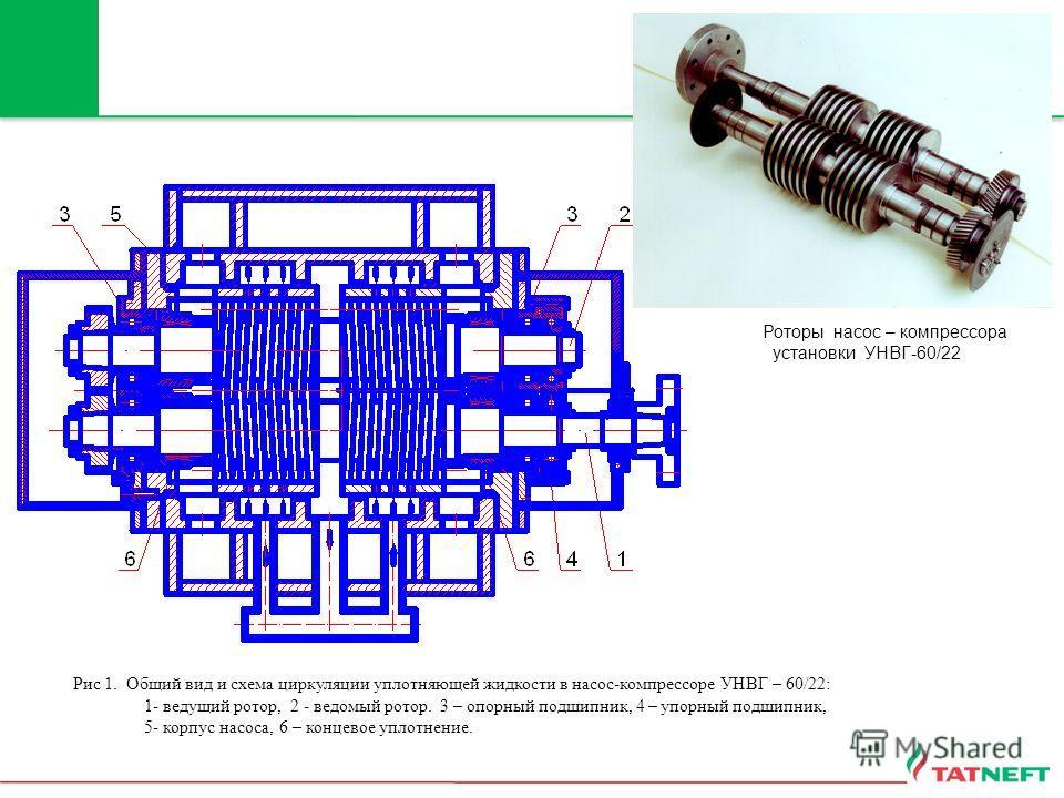 Роторы насос – компрессора установки УНВГ-60/22 Рис 1. Общий вид и схема циркуляции уплотняющей жидкости в насос-компрессоре УНВГ – 60/22: 1- ведущий ротор, 2 - ведомый ротор. 3 – опорный подшипник, 4 – упорный подшипник, 5- корпус насоса, 6 – концев
