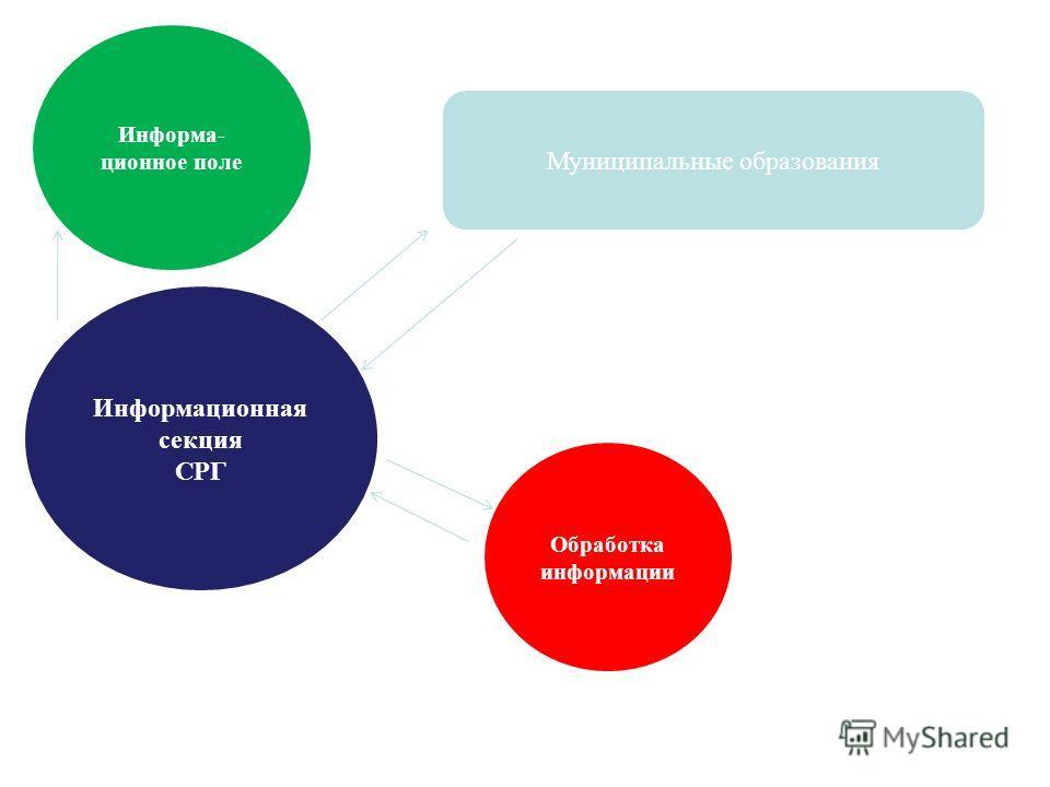 Муниципальные образования Информационная секция СРГ Обработка информации Информа- ционное поле