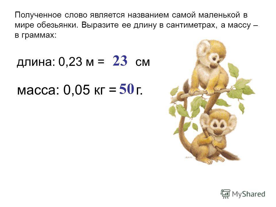 Полученное слово является названием самой маленькой в мире обезьянки. Выразите ее длину в сантиметрах, а массу – в граммах: длина: 0,23 м = см 23 масса: 0,05 кг = г. 50