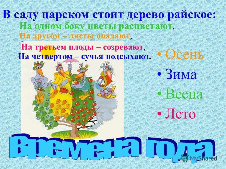 Осень Зима Весна Лето В саду царском стоит дерево райское: На одном боку цветы расцветают, На другом – листы опадают, На третьем плоды – созревают, На четвертом – сучья подсыхают.