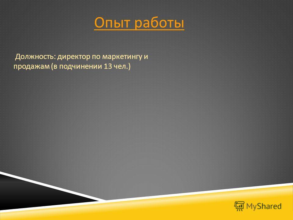 Опыт работы Должность : директор по маркетингу и продажам ( в подчинении 13 чел.)