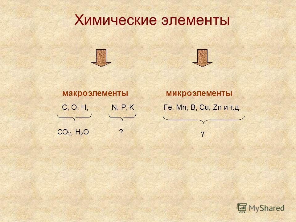 Химические элементы макроэлементы микроэлементы С, О, Н,N, P, KFe, Mn, B, Cu, Zn и т.д. СО 2, Н 2 О? ?