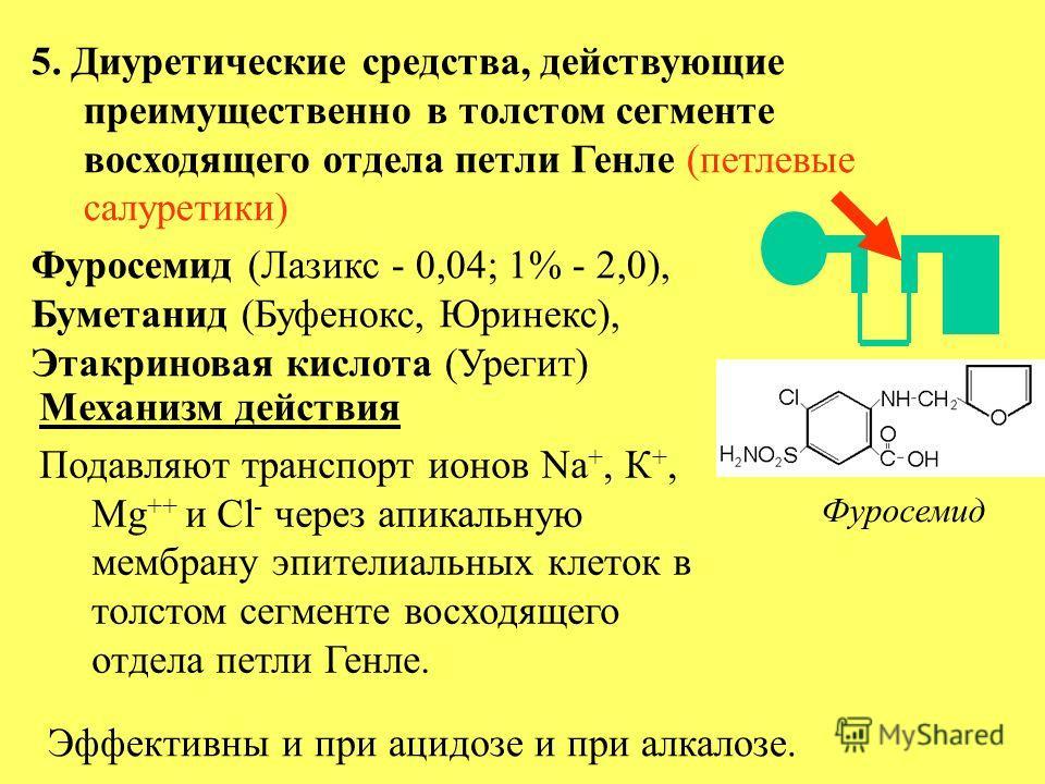 5. Диуретические средства, действующие преимущественно в толстом сегменте восходящего отдела петли Генле (петлевые салуретики) Фуросемид (Лазикс - 0,04; 1% - 2,0), Буметанид (Буфенокс, Юринекс), Этакриновая кислота (Урегит) Фуросемид Механизм действи