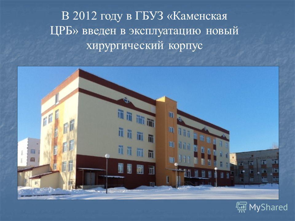 В 2012 году в ГБУЗ «Каменская ЦРБ» введен в эксплуатацию новый хирургический корпус