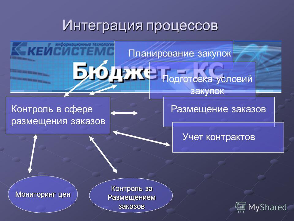 Интеграция процессов Планирование закупок Подготовка условий закупок Размещение заказов Учет контрактов Контроль в сфере размещения заказов Мониторинг цен Контроль за Размещением заказов