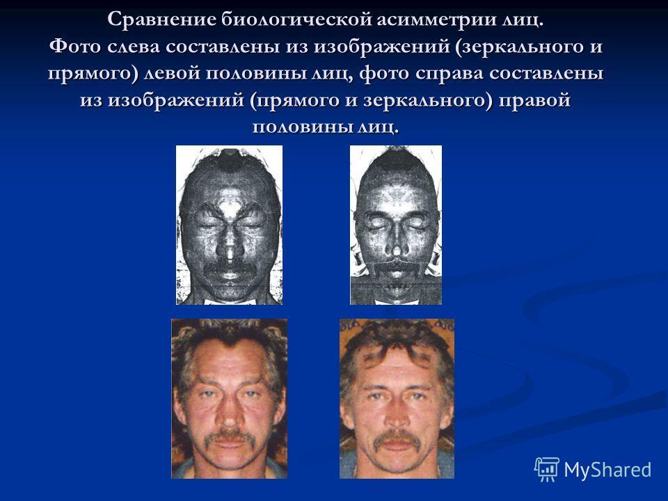 Сравнение биологической асимметрии лиц. Фото слева составлены из изображений (зеркального и прямого) левой половины лиц, фото справа составлены из изображений (прямого и зеркального) правой половины лиц.