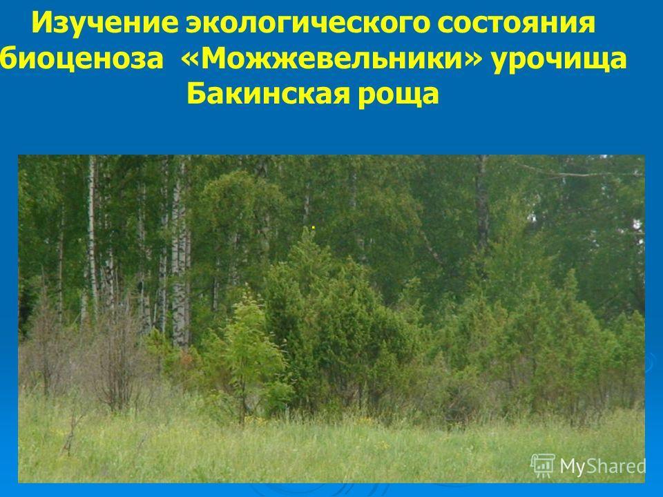 Изучение экологического состояния биоценоза «Можжевельники» урочища Бакинская роща.