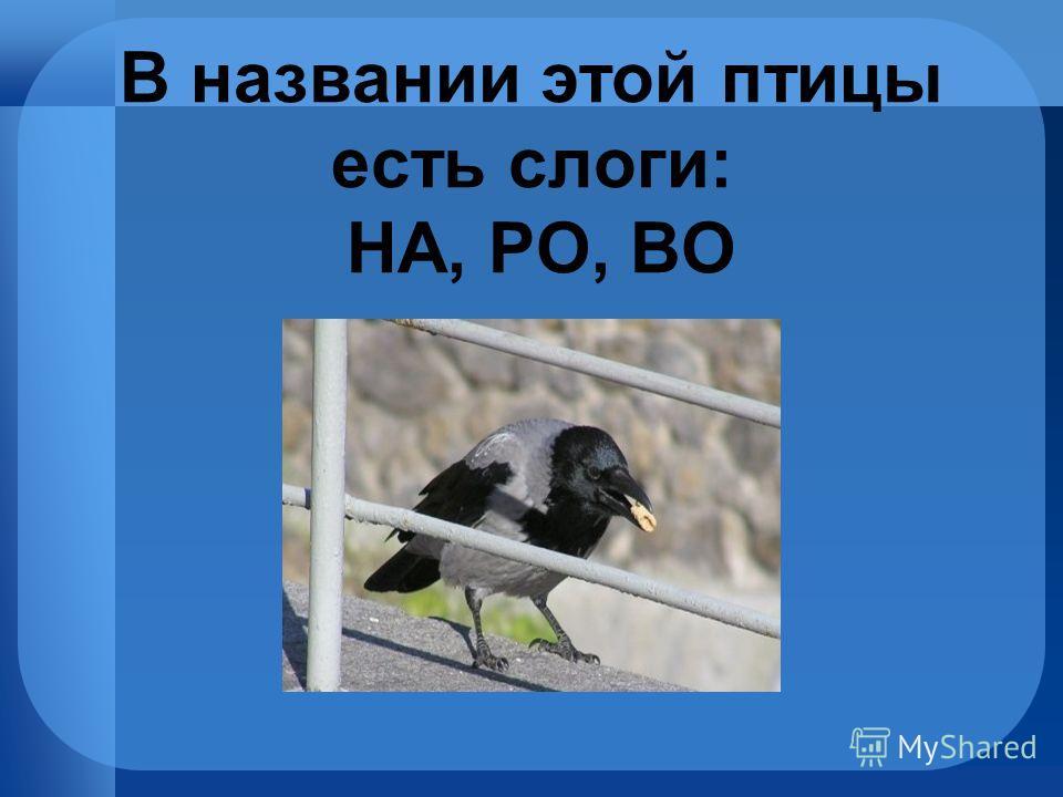 В названии этой птицы есть слоги: НА, РО, ВО