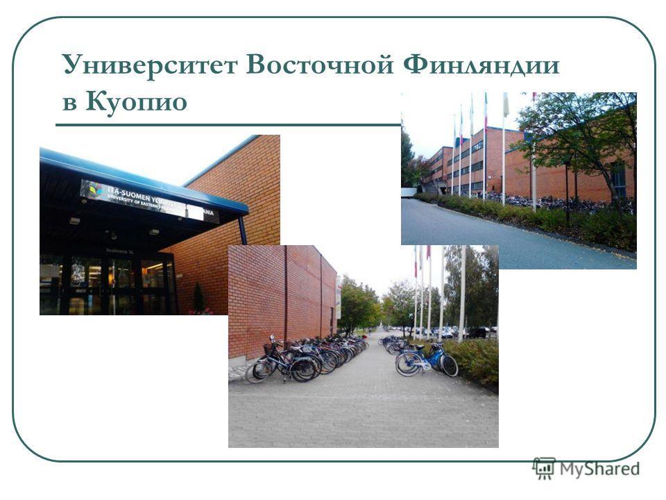 Университет Восточной Финляндии в Куопио