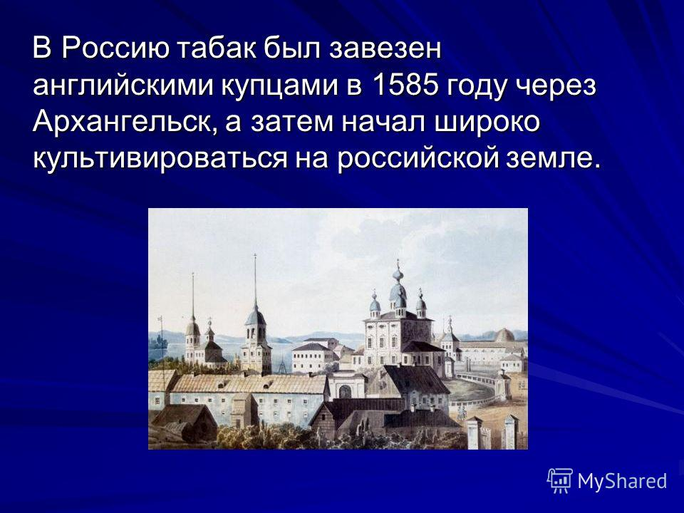 В Россию табак был завезен английскими купцами в 1585 году через Архангельск, а затем начал широко культивироваться на российской земле. В Россию табак был завезен английскими купцами в 1585 году через Архангельск, а затем начал широко культивировать